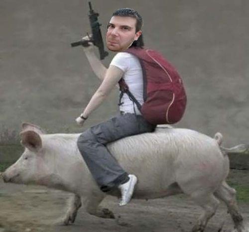 Pig Battle